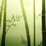 Bamboo_Zen_by_MissNysha