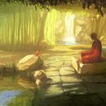 zen medi