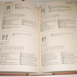dizionario maxi
