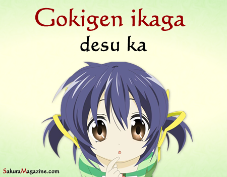 gokigen